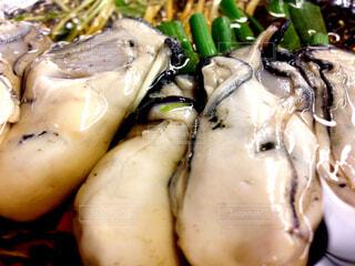 牡蠣オイル焼きワインジュレの写真・画像素材[4797512]