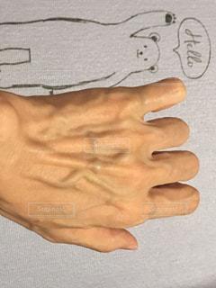血管の写真・画像素材[1299098]