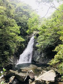 森の中の大きな滝の写真・画像素材[1322520]