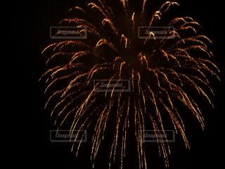 散る花火の写真・画像素材[1364085]