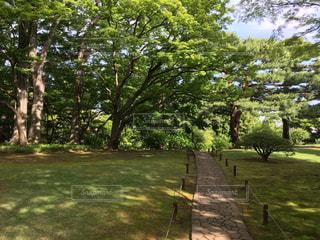 庭園の風景の写真・画像素材[1290229]