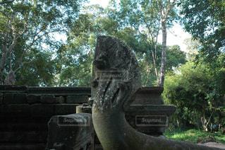 遺跡の中の石像の写真・画像素材[1292868]
