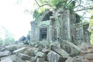 遺跡の中で木が生えた石の建物の写真・画像素材[1292869]