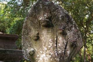 遺跡の中の石像の写真・画像素材[1292913]