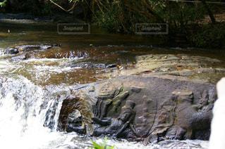 川の中の遺跡の写真・画像素材[1292939]