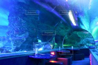 水族館の中にあるバーの写真・画像素材[1302911]