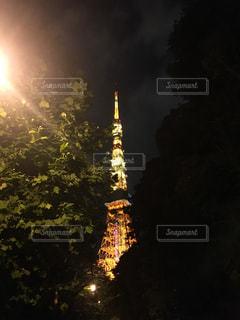 時計塔を背景に東京タワーの夜のライトアップの写真・画像素材[1289522]