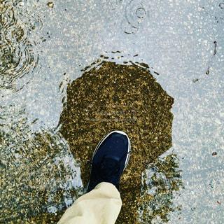 雨の写真・画像素材[2182888]