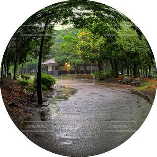 公園の眺めの写真・画像素材[2182889]