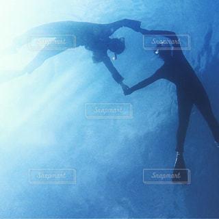 ダイビングの写真・画像素材[1291453]