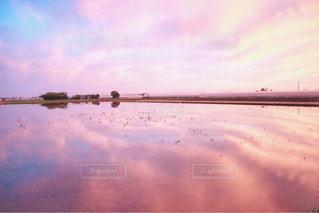 pink skyの写真・画像素材[1552327]