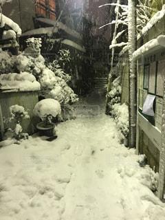 雪に覆われた道の写真・画像素材[1292112]