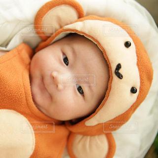 赤ちゃんのぬいぐるみを保持の写真・画像素材[1292129]