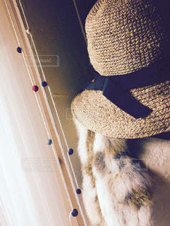 麦わら帽子と毛皮のベストの写真・画像素材[1292752]