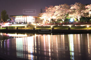 夜の街の景色の写真・画像素材[1293423]