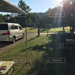 キャンプの朝の写真・画像素材[1293809]