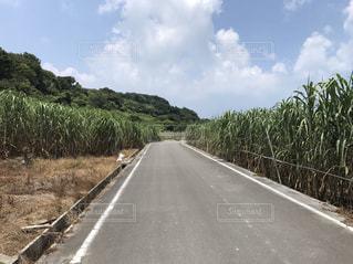 道の端にサインの写真・画像素材[1293835]