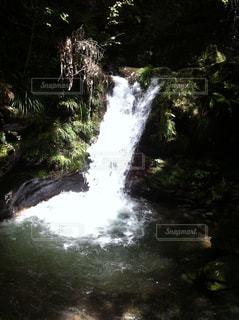 川の側の木と滝の写真・画像素材[1293852]
