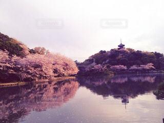 背景の山と水体の写真・画像素材[1293955]