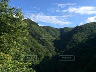 背景の山と木の写真・画像素材[1294231]