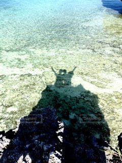 水に映る影の写真・画像素材[1295689]