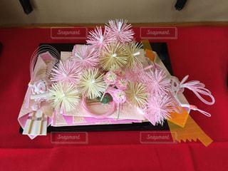 赤白とピンクの花の写真・画像素材[1305704]