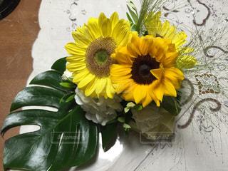 黄色い花の写真・画像素材[1305705]