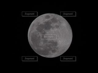 まんまるお月様の写真・画像素材[1294834]