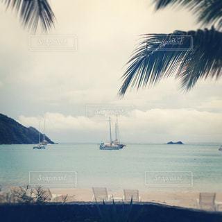 海とヤシの木と空の写真・画像素材[1323056]