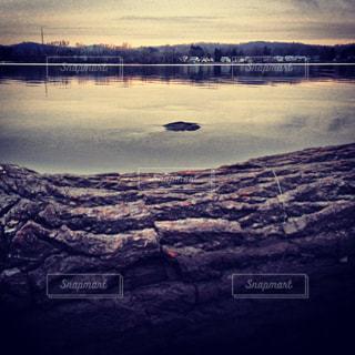 湖に沈む夕日の写真・画像素材[1325078]