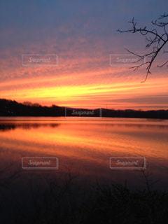 湖に沈む夕日の写真・画像素材[1325081]