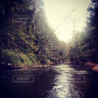 川の流れの写真・画像素材[1325119]