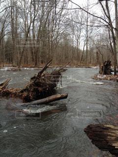 冬の魚釣りの写真・画像素材[1326315]