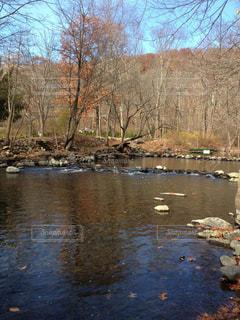 川の写真・画像素材[1326334]