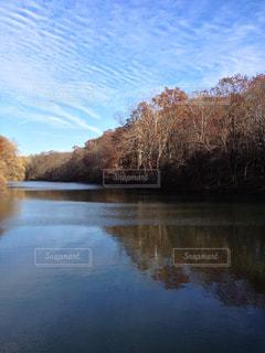 木々 に囲まれた川の写真・画像素材[1326336]