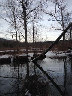 冬の川、釣魚旅行の写真・画像素材[1326338]