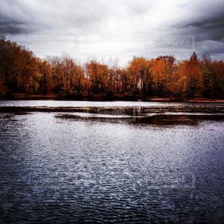 木々 に囲まれた川の写真・画像素材[1326374]