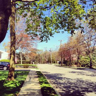 住宅街の写真・画像素材[1326486]