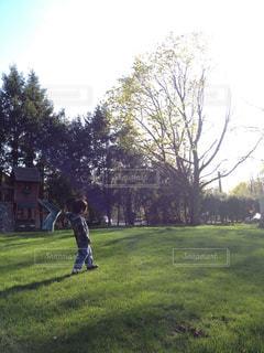 庭で遊ぶ少年の写真・画像素材[1326674]