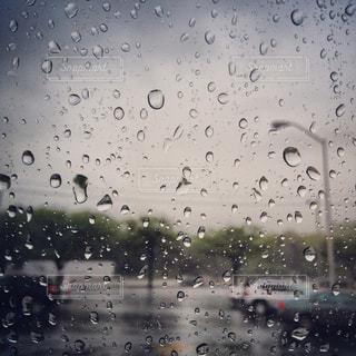 雨の日の写真・画像素材[1328531]