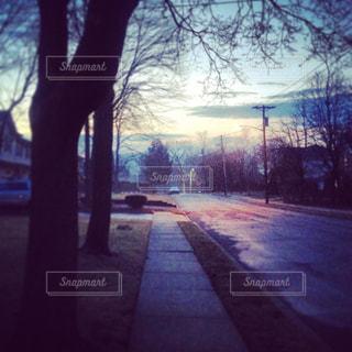 通りの眺めの写真・画像素材[1328720]