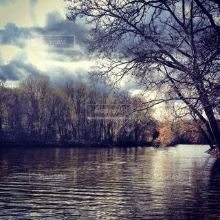 木々 に囲まれた水の写真・画像素材[1328729]