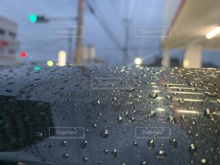雨の写真・画像素材[4554858]