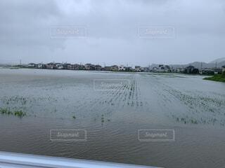 河川氾濫の写真・画像素材[4610693]