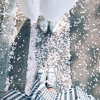 桜と2人の写真・画像素材[1297914]