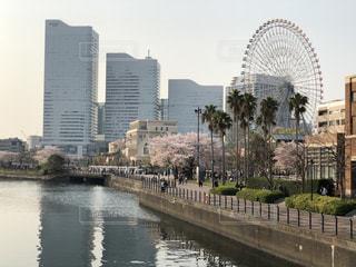 春のみなとみらい@横浜の写真・画像素材[2357137]