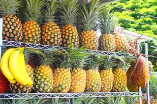 新鮮な果物や野菜の山の写真・画像素材[1318890]