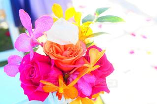 花束の写真・画像素材[1319089]