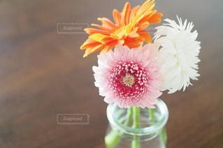 テーブルの上の花の花瓶の写真・画像素材[1319097]