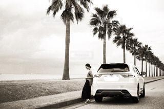 ヤシの木と愛車と私の写真・画像素材[1320743]